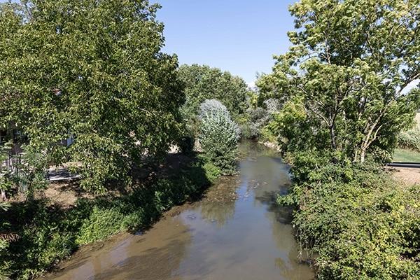 rivière à Condamine