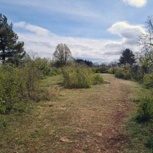 Prairie sèche sur le plateau de Mancy, réserve naturelle