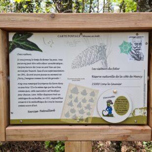 Panneau sur Côte de Mancy, réserve naturelle