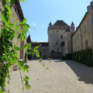 Photo n°9 : Château du Pin